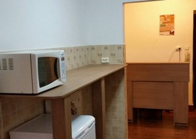 irenes hostel suceava  (3)