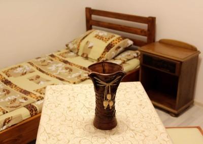 irenes hostel suceava  (4)