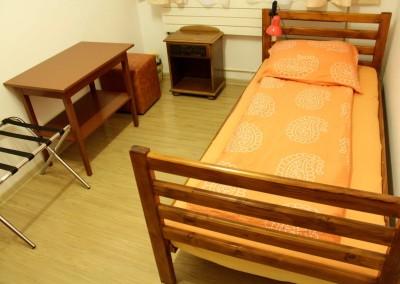 irenes hostel suceava  (5)