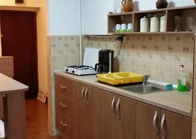 irenes hostel suceava  (7)