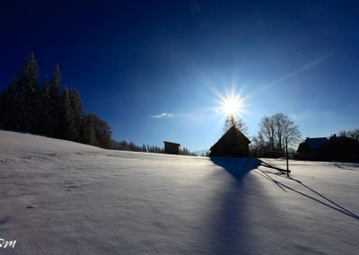 Winter in Bucovina's Countryside