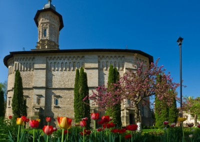 Dragomirna Monastery (5)