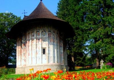 Humor Monastery (12)