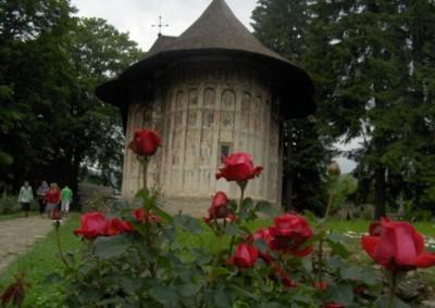 Humor Monastery (7)