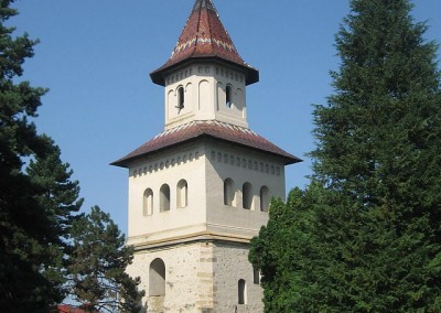 St John the New of Suceava Monastery (6)