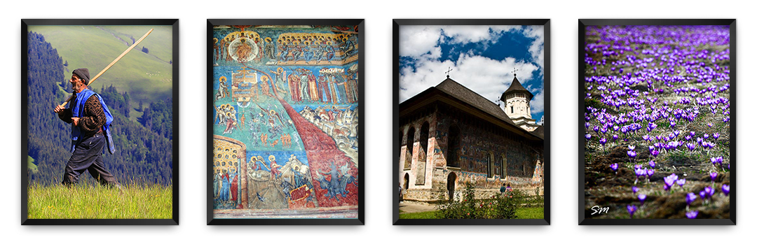 Bucovina Painted Monasteries and more